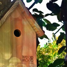 casa-ninho
