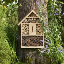 insect-house-royalty-free-image-1579870257